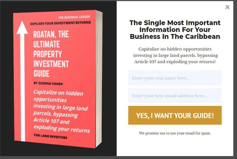 Old_Lead_Magnet_Example.jpg